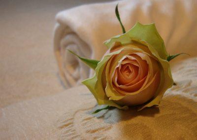 roos-kussen-deken